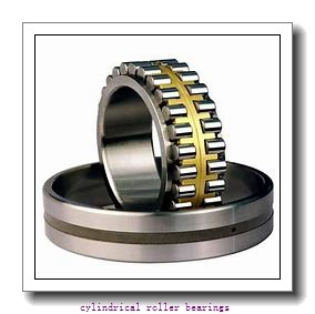 FAG NU2217-E-M1  Cylindrical Roller Bearings