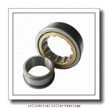 FAG NU2217-E-M1-F1-C3  Cylindrical Roller Bearings