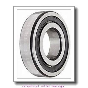 FAG NU221-E-M1  Cylindrical Roller Bearings