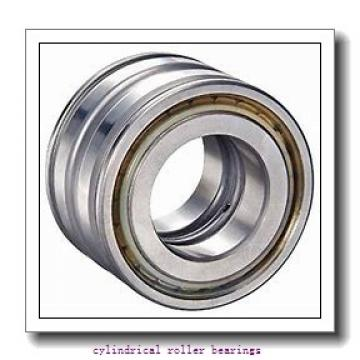 65 mm x 120 mm x 23 mm  FAG NJ213-E-TVP2  Cylindrical Roller Bearings